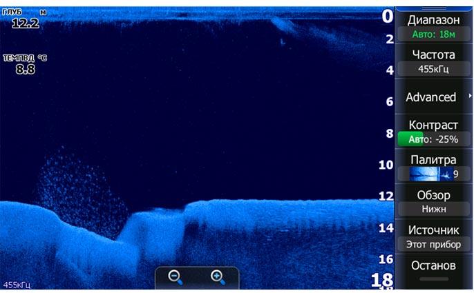Подводные «барханы» часто становятся прибежищем кормовой рыбы, которую обязательно кто-то ест