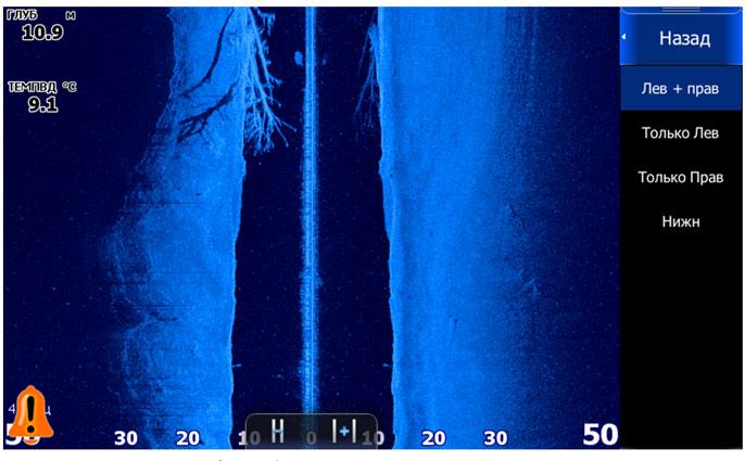 Так эта коряжка выглядит на боковом сканере.