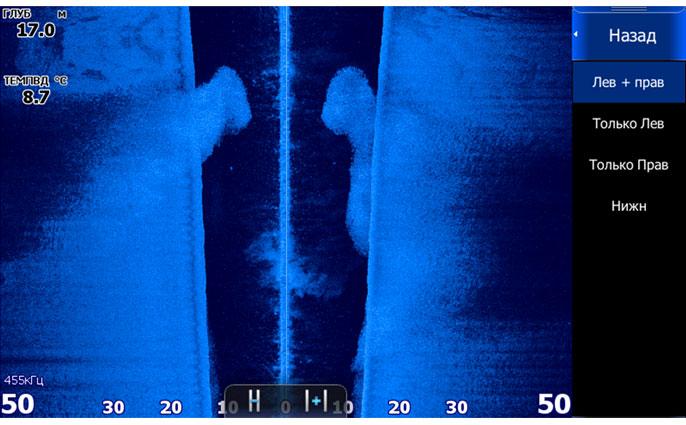 стая сложной формы не уместилась на экране. Охват бокового сканера  выставлен на 50м.
